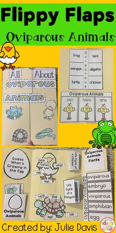 What animals hatch from eggs? This is a great way to get your students learning about Oviparous Animals in a fun hands-on interactive way! Your students will be engaged and learn about Oviparous Animals in many different ways and will have a keepsake to bring home and share with their families! Activities included:  ✩ Label Chick ✩ Label Frog ✩ Label Turtle ✩ Oviparous Word/Picture Match ✩ Oviparous Animals KWL ✩ Oviparous Animals can/have/are ✩ Oviparous Animals Facts ✩ Life Cycle of a…