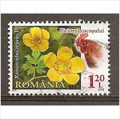 ROEMENIE / ROMANIA JAAR 2012 Y£T 5567 Gestempeld on eBid United Kingdom
