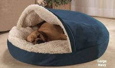 Best Dog Bed EVER! Ordered last time they were on sale and not off for Black Friday! Cozy Cave Dog Bed - My Doggy Is Delightful Diy Pour Chien, Cozy Cave Dog Bed, I Love Dogs, Cute Dogs, Cool Dog Beds, Small Dog Beds, Pet Beds, Dog Houses, Dog Accessories