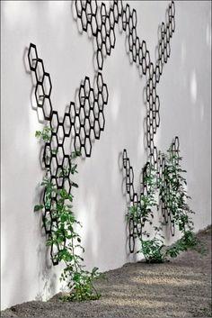 Modern outdoor trellis
