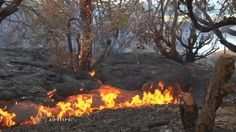 Watch the video Lava flow continues near Hawaii town on Yahoo News . The Puna lava flow continues from the Kilauea volcano on the Big Island of Hawaii. Rough Cut (no reporter narration).
