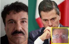 El gobierno Federal dio la orden de liberar al Chapo - Info Noticias