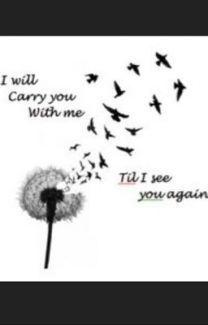 I Will See You Again - Wattpad