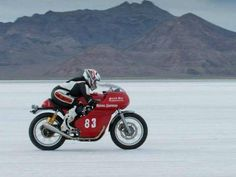 Royal Enfield Continental GT at Bonneville Weekend In Miami, Enfield Motorcycle, Cafe Racer Style, Royal Enfield, Motorbikes, Racing, Scrambler, Vehicles, Instagram Posts
