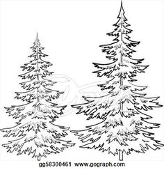 Pine Tree Outline Clip Art | Stock Illustration - Fur-tree, contours. Clip Art gg58300461 - GoGraph