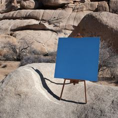 4 | A Mirror Lends A New View On California's Joshua Tree | Co.Design: business + innovation + design