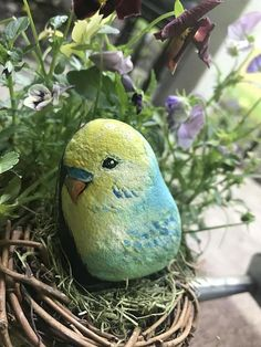 Items similar to Hand-painted Parakeet Rock - Painted Budgie Rock - Hand-painted bird rock on Etsy Stone Art Painting, Pebble Painting, Pebble Art, Painted Rock Animals, Painted Rocks, Hand Painted, Rock Painting Patterns, Rock Painting Designs, Stone Crafts