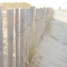 *beach* by brownies and butterflies, via Flickr