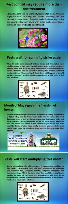 Home Pest Control services help alleviate these issues with a fast pace. With the start of May you need to hire professional help soon before it becomes a serious issue. For more information, please visit us at http://www.homepest.com.