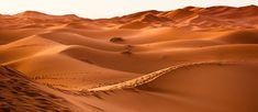 Os maiores desertos do mundo