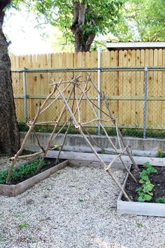 Make a garden trellis from trimmed branches or wood scraps.