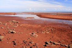 Del rosa al verde: las 12 playas más coloridas del mundo | Skyscanner Red Sands Shore, Isla del Príncipe Eduardo, Canadá  Arenisca roja y una alta concentración de hierro tiñen la costa de la Isla del Príncipe Eduardo de un rojo vibrante.