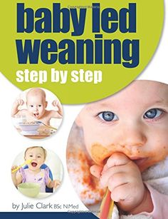 Baby Led Weaning – Your Questions Answered - Homemade Baby Food Recipes To Help You Create A Healthy Menu For YOUR Baby
