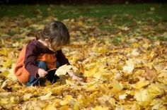 What to plant with the kids this autumn