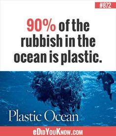 of the rubbish in the ocean is plastic. Rubbish In The Ocean, Garbage In The Ocean, Random Facts, Weird Facts, Amazing Facts, Interesting Facts, Did You Know Facts, Different Quotes, Earth From Space