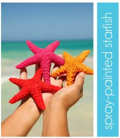 Google Image Result for http://www.thepartydress.net/wp-content/uploads/2012/07/starfish.jpg