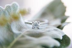 wedding ring  byron bay wedding www.benandhopeweddings.com.au