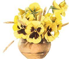 Bowl of pansies - Marjolein Bastin Art Floral, Marjolein Bastin, Nature Artists, Flower Clipart, Dutch Artists, Mellow Yellow, Colour Yellow, Vintage Flowers, Pansies