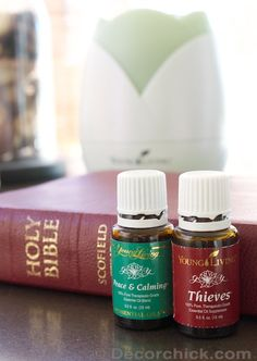 How To Use Essential Oils   Day in The Life of An Oiler - Decorchick! ®