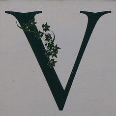 letter V by Leo Reynolds, via Flickr