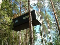 This is a treeHOUSE