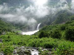 Valley of flowers in the Garhwal Himalyas