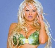 List of famous people who have chosen to be vegan or vegetarian #vegetarian #vegan – More at http://www.GlobeTransformer.org