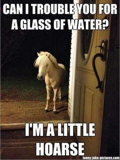 Funny Glass Water Little Hoarse Pun Picture