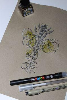 "Day Herba do asno (Onagra) ""Oenothera Glazioviana"" Inktober, 30th, Herbs, Drawings, Herb, Sketches, Drawing, Portrait, Draw"