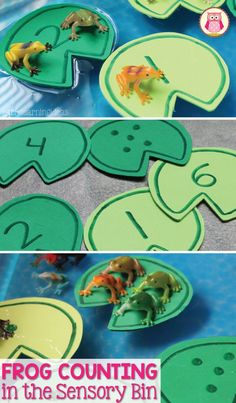 Frog counting activity- Make numbered lily pads and use them, along with small toy frogs, in a sensory bin, water table, or large container filled with water. The article includes directions for making the lily pads. a printable pattern that you can down