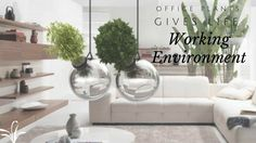 Office Plants Gives Life to your Working Environment