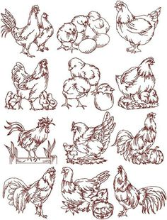 Free Rooster Chicken Embroidery Pattern