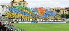 Frosinone-Sampdoria: Forventede startopstillinger!
