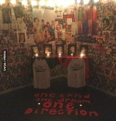 """On a scale of """"I own both albums"""" to """"shrine in my room"""", how obsessed with 1D are you? I think this is level shrine."""