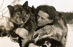 In 1925 the decision was made for multiple sled dog teams to relay the medicine across the treacherous frozen land to the village of Nome. The dog that often gets credit for eventually saving the town is Balto, but he just happened to run the last, 55-mile leg in the race. The sled dog who did most of the work was Togo. His 200 miles journey included a traverse across perilous Norton Sound  where he saved his team and driver in a courageous swim through ice floes. Togo, we salute you.