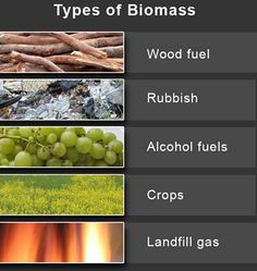 "Biomass Energy | Remember ""You Can Change The World"""