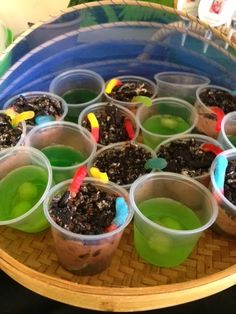 Mini dirt cake, and snake egg jell-o for sons reptile party!