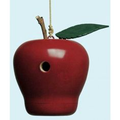 Bird-watching is a classic pastime and a great activity. Help encourage more of your feathered friends to live in your own backyard. A fun DIY apple themed birdhouse project plan. Woodworking Courses, Woodworking School, Woodworking Store, Learn Woodworking, Woodworking Projects Plans, Teds Woodworking, Woodworking Machinery, Woodworking Apron, Woodworking Basics