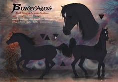 Bukefalos - reference commission by Chistokrovka.deviantart.com on @DeviantArt
