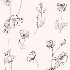 pattern, textile design, illustration, flower drawing, feminine pattern