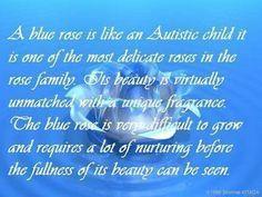 autism dont ask a stupid question | Autism/Blue Rose photo autism-6.jpg