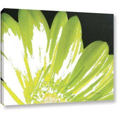 ArtWall Herb Dickinson Gerber Time Iii Gallery-wrapped Canvas, Size: 36 x 48, Black