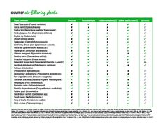 cleanair-chart