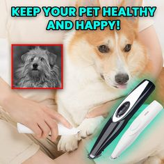The Paw Trimmer™ Electric Pet Feet Shaver Animals And Pets, Baby Animals, Cute Animals, Dog Paws, Pet Dogs, Pet Pet, Dog Grooming Tips, Pet Shop, Dog Items