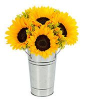 """Two stately sunflowers grab most of the attention in this gorgeous arrangement...however the lovely aster, orange carnations and eucalyptus deserve plenty of credit too for completing a captivating design displayed in an orange pot container. Measures 10""""H X 8""""L. Includes: • Sunflowers • Mastamoto Asters • Orange Carnations • Garden Pot • Card Message"""
