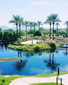 "This is where I'll spend the next three days. Not bad for a ""desert""! #jwdesertridge #resort #hotel #hotelli #phoenix #visitphoenix #arizona #palmtrees #palmut #travel #matka #reissu #matkakuume #työmatka (via Instagram)"