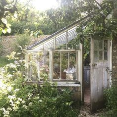 The greenhouse in @sarahmaingotphotography garden couldn't be any more idyllic #aroomofonesown #greenhouse #englishcountrygarden #cowparsley