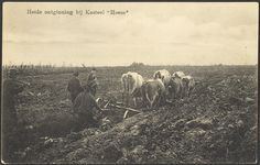 Heeze (circa 1910)