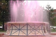 Fountain with water turned pink to support breast cancer.. water also puts out fires!!