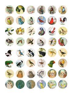 BottlecapDesigns8.jpg 1,236×1,600 pixels